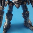 LEGS:LH09-COUAR2