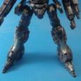 LEGS:LH09-COUGEAR2